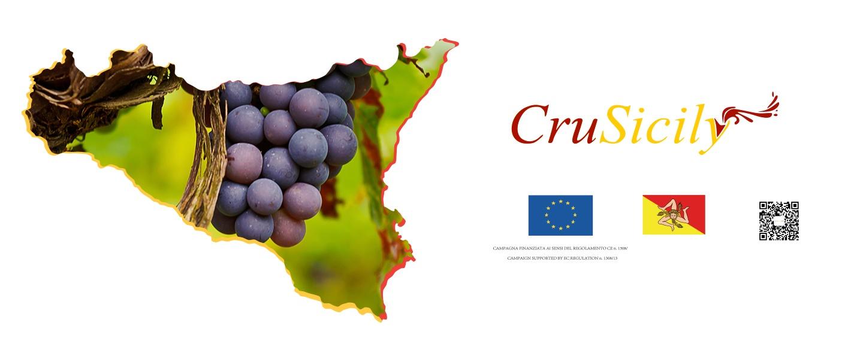 发现西西里的葡萄酒