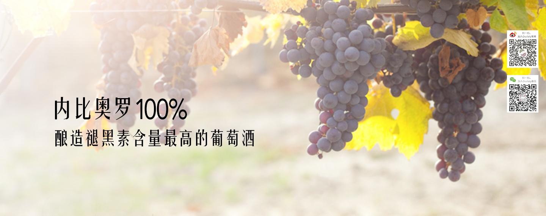 褪黑素含量最高的葡萄酒源自100%内比奥罗
